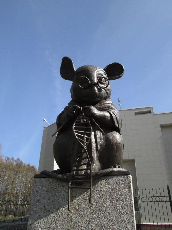Pomnik myszy laboratoryjnej - Sputnik Polska