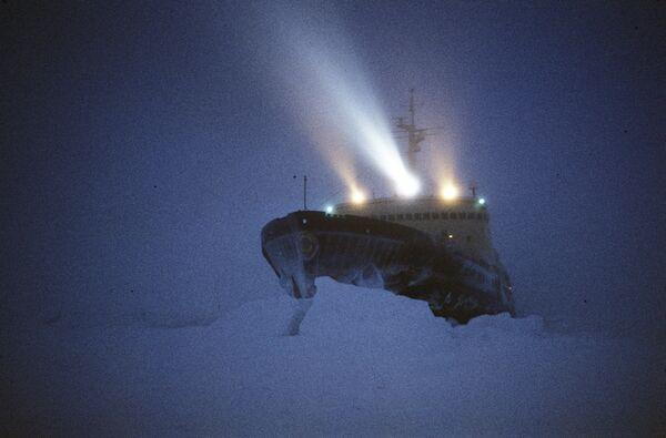 Lodołamacz Władywostok na Antarktydzie - Sputnik Polska