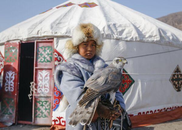 Młody myśliwy z sokołem podczas tradycyjnych zawodów myśliwskich w miejscowości Nura w Kazachstanie - Sputnik Polska