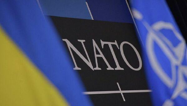 Flagi Ukrainy i NATO - Sputnik Polska