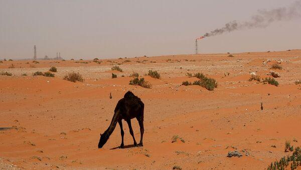 Wydobycie ropy w Arabii Saudyjskiej - Sputnik Polska