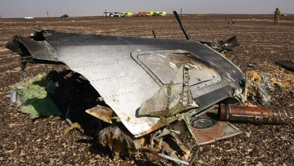 Szczątki samolotu na miejscu katastrofy A321 w Egipcie - Sputnik Polska