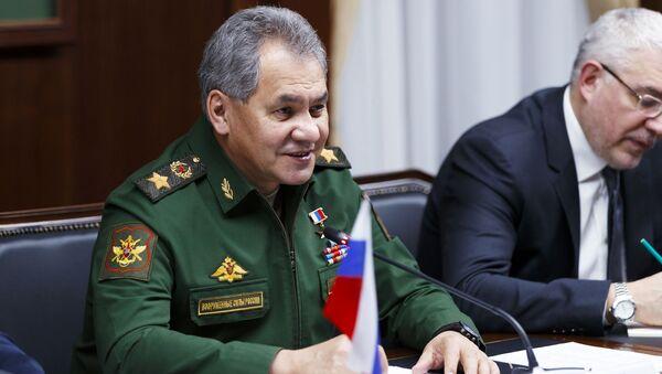 Spotkanie ministra obrony Rosji Siergieja Szojgu z irańskim ministrem obrony Hosseinem Dehghanem - Sputnik Polska