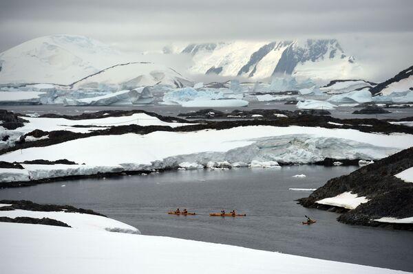 Kajakarze w otoczeniu gór lodowych na Antarktydzie - Sputnik Polska