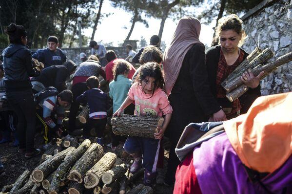 Uchodźcy zbierający kawałki drzewa dla rozpalenia ogniska w greckiej Idomenii - Sputnik Polska