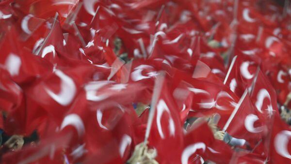 Flagi Turcji - Sputnik Polska