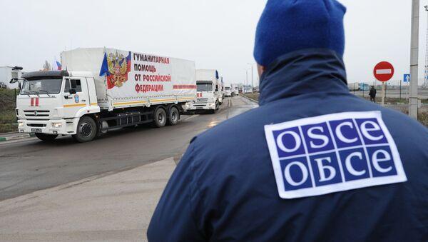 Pracownik OBWE obserwuje kolumnę 50. konwoju z pomocą humanitarną dla mieszkańców obwodu donieckiego i ługańskiego - Sputnik Polska