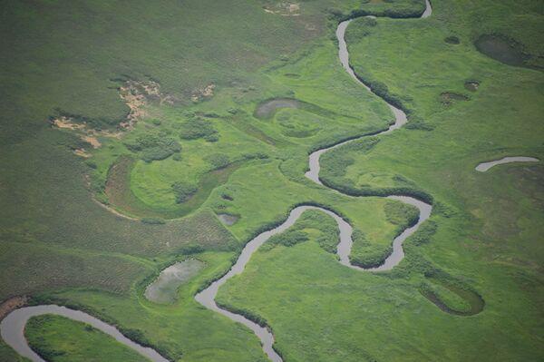 Widok na jedną z rzek w Rezerwacie Kronockim na Kamczatce - Sputnik Polska