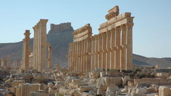 Castelo de Palmira (no fundo da foto) - Sputnik Polska