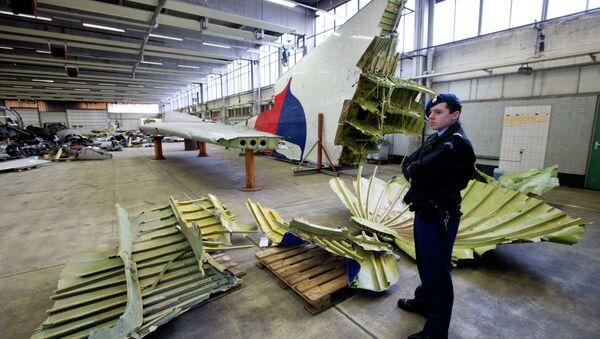 Holenderski żołnierz stoi obok szczątków wraku MH17 - Sputnik Polska