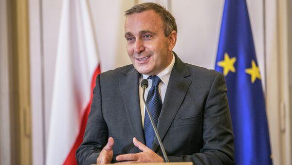 Grzegorz Schetyna, minister spraw zagarnicznych RP - Sputnik Polska