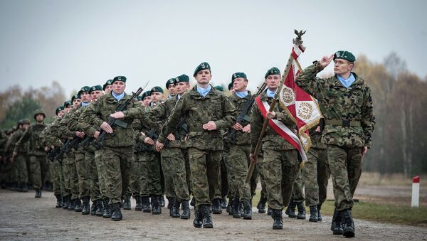 Polscy żołnierze w składzie sił szybkiego reagowania NATO - Sputnik Polska