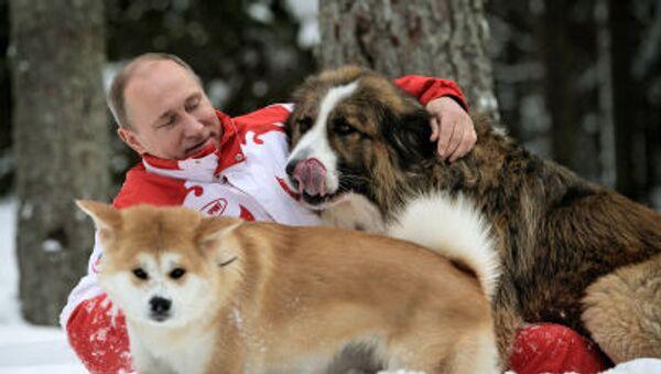 Prezydent Rosji Władimir Putin na wycieczce z psami, 23 marca 2014 - Sputnik Polska