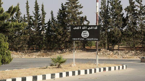 Flaga Daesh w Manbidż, Syria - Sputnik Polska