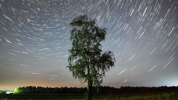 Rój meteorytów Perseidy - Sputnik Polska