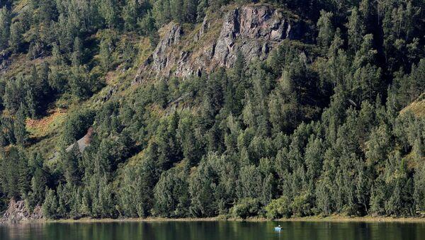 Tajga nad rzeką Jenisej - Sputnik Polska