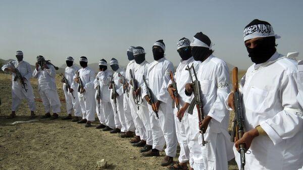 Talibscy zamachowcy samobójcy pełnią straż podczas spotkania separatystycznej frakcji talibów w przygranicznej strefie prowincji Zabul, Afganistan - Sputnik Polska