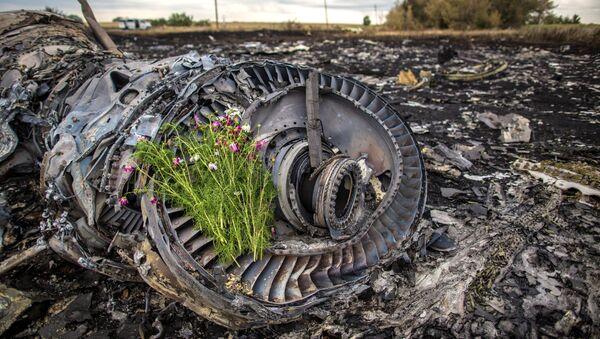 Miejsce katastrofy Boeinga 777 - Sputnik Polska