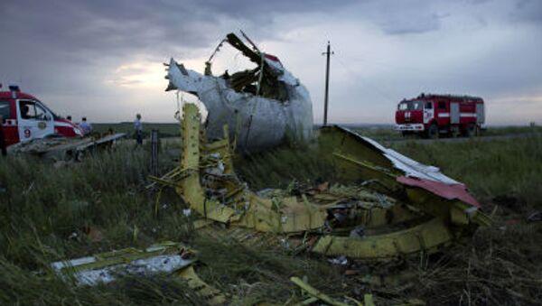 Miejsce katastrofy malezyjskiego Boeinga 777, wykonującego lot MH17, w obwodzie donieckim - Sputnik Polska