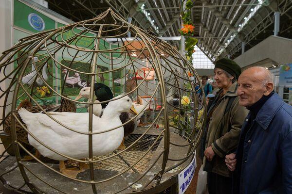 Wiktor Siemionow, w latach 1998-1999 zajmujący stanowisko ministra rolnictwa Rosji, uważa, że Rosja może być dumna z sektora hodowli ptactwa, który robi wrażenie również na Zachodzie. - Sputnik Polska