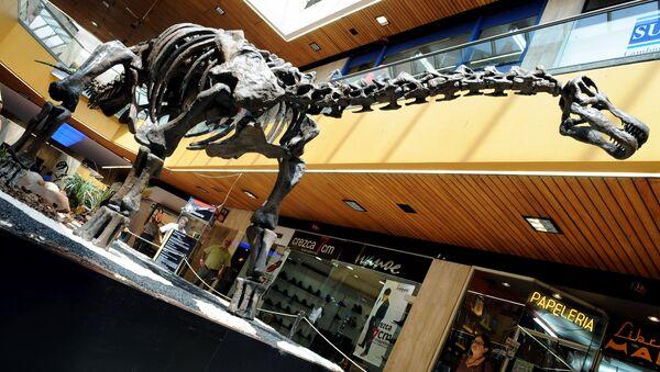 Kopia szkieletu tytanozaura w Kolumbii - Sputnik Polska