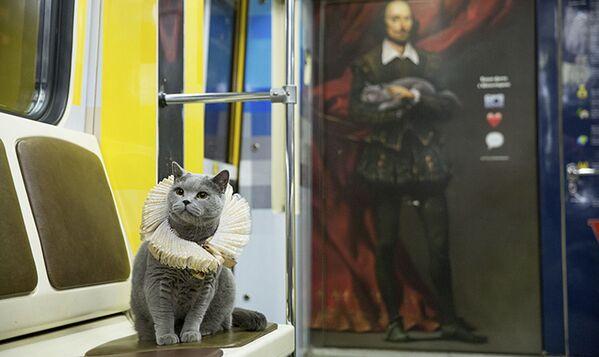 Kot został wybrany nieprzypadkowo, jest to bowiem wierna kopia jednego z bohaterów tego tematycznego pociągu. - Sputnik Polska