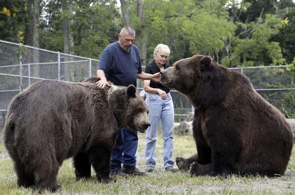 Pracownicy opiekują się niedźwiedziami w schronisku dla osieroconych dzikich zwierząt w Otisville, w stanie Nowy Jork, USA - Sputnik Polska