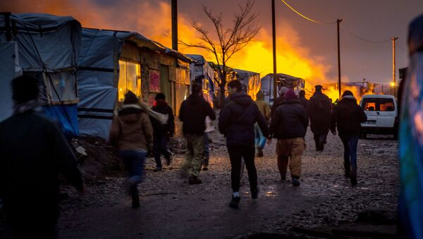 Migranci. Calais - Sputnik Polska