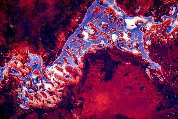 Zdjęcie Australii wykonane przez astronautę Scotta Kelly'ego z Międzynarodowej Stacji Kosmicznej. - Sputnik Polska