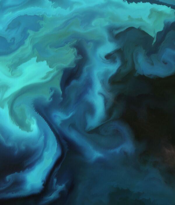 Nagromadzenie planktonu na Morzu Barentsa. - Sputnik Polska