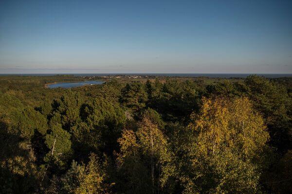 Wzgórze Müllera, którego nazwa wywodzi się od nazwiska leśniczego z Kaliningradu, który wymyślił nowy sposób sadzenia lasu, tak, żeby zatrzymać ruch wydm. Możliwe, że to właśnie on uratował osadę Rybaczyj od zasypania piaskiem. Wzgórze Müllera znajduje się na 31 kilometrze mierzei, wiedzie do niego trasa dla pieszych. - Sputnik Polska