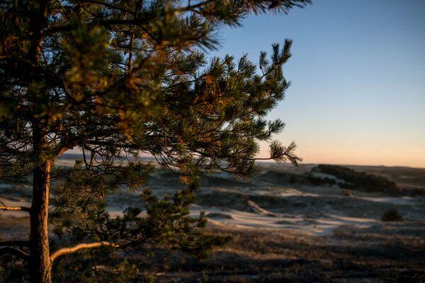 Mierzeja Kurońska uważana jest za największy wał piaskowy na świecie. - Sputnik Polska
