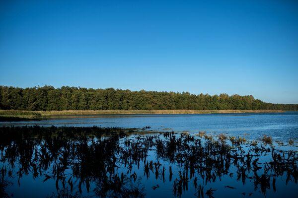 Największe jezioro Mierzei Kurońskiej - Czajka, wcześniej zajmowało jeszcze większą powierzchnię, ale w XIX wieku wiatr zaczął przenosić do wody piasek z Bołotnej wydmy i rozmiar jeziora uległ zmniejszeniu. - Sputnik Polska