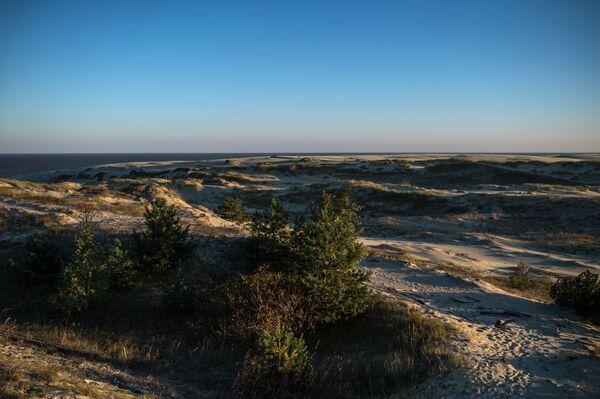 Mierzeja Kurońska ukształtowała się w wyniku wzajemnego oddziaływania morza, wiatru i obecności człowieka.  Piaskowe wydmy na Mierzei Kurońskiej należą do najwyższych w Europie. - Sputnik Polska