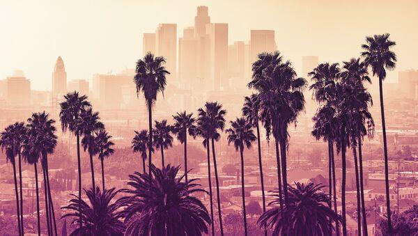 Los Angeles, Kalifornia - Sputnik Polska
