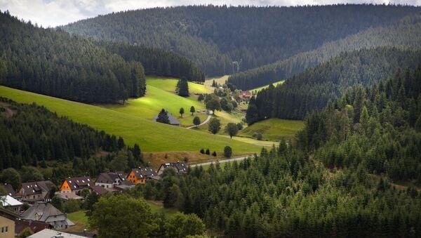 Schwarzwald - Sputnik Polska