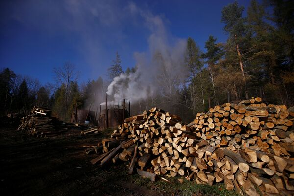Drewno przy piecach węglowych na terenie wypału węgla drzewnego w bieszczadzkim lesie w Polsce - Sputnik Polska