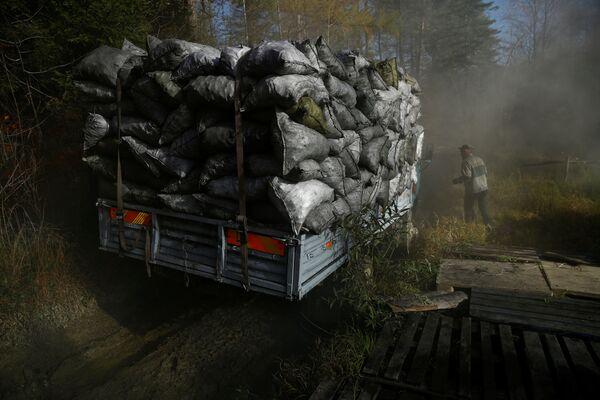 Węglarz na terenie wypału drewna, w lesie nieopodal Bieszczad w Polsce - Sputnik Polska