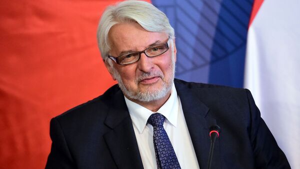 Szef polskiego MSZ Witold Waszczykowski - Sputnik Polska