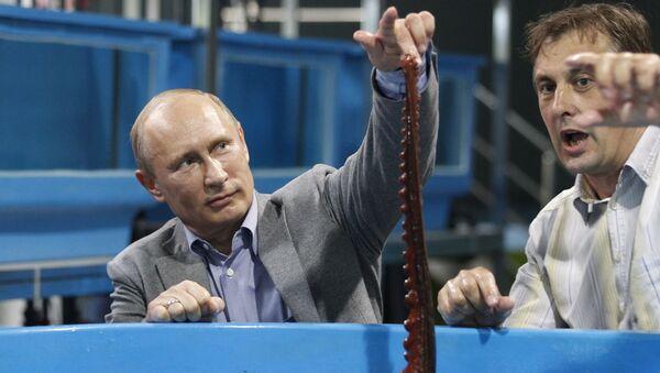 Władimir Putin z ośmiornicą - Sputnik Polska