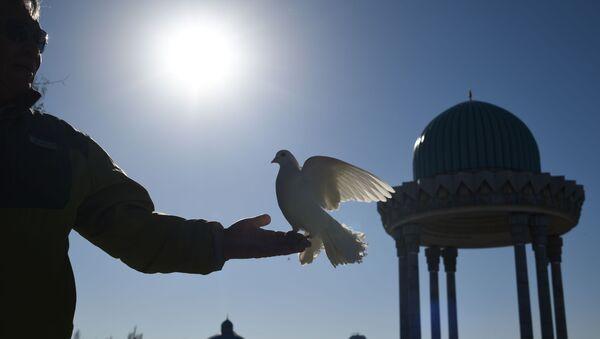 Mężczyzna puszcza gołębie na jednej z ulic w Taszkencie. - Sputnik Polska