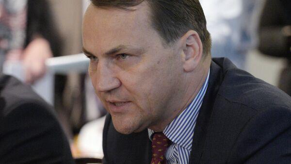 Marszałek Sejmu Radosław Sikorski - Sputnik Polska