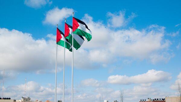 Flagi Palestyny - Sputnik Polska