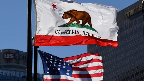 Flaga Kalifornii na ulicy w Los Angeles - Sputnik Polska