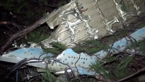 Samolot syryjskich sił powietrznych rozbił się w prowincji Hatay na południu Turcji - Sputnik Polska