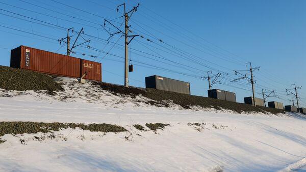 Pociąg towarowy kursujący na jednym wz odcinków Kolei Transsyberyjskiej - Sputnik Polska