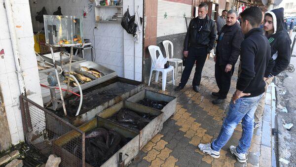 Sprzedaż ryb w syryjskim mieście Hama - Sputnik Polska