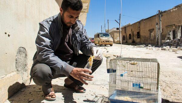 Zbieranie dowodów na miejscu domniemanego ataku chemicznego w mieście Chan Szejchun w Syrii - Sputnik Polska
