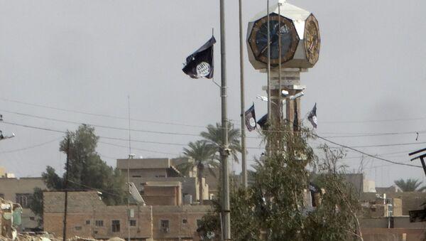 Flaga PI w Iraku - Sputnik Polska