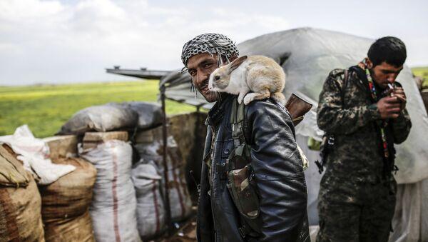 Kurdyjski powstaniec w okolicy miasta Kobane w Syrii - Sputnik Polska